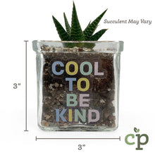 Load image into Gallery viewer, Mini Succulent Planter Kit Gift Cool to be Kind Cutieplants