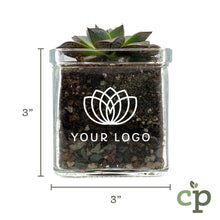 Load image into Gallery viewer, Custom Branded Succulent Gift Kit Corporate Gift Dimensions