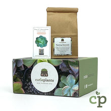 Load image into Gallery viewer, Cutieplants Custom Branded Succulent Gift Kit