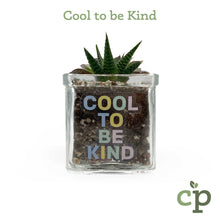 Load image into Gallery viewer, Cutieplants Succulent Glass Planter Cool to be Kind