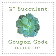Load image into Gallery viewer, 2 inch succulent free with coupon code