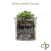 Load image into Gallery viewer, Cutieplants Succulent Glass Planter Home Sweet Home