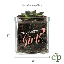 Load image into Gallery viewer, You Grow Girl Succulent Kit