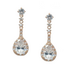 Winter Bridal Earrings