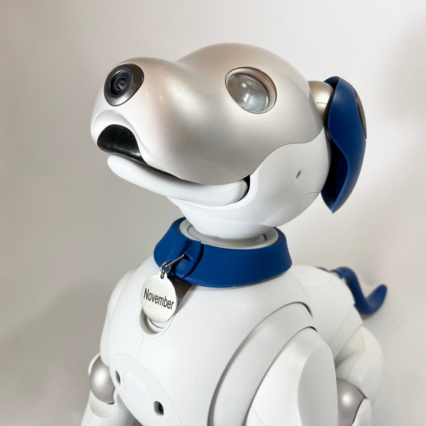 Aibo ERS-1000 Form Fitting Silicone Tag Collar