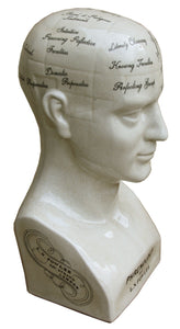 42cm-phrenology-head