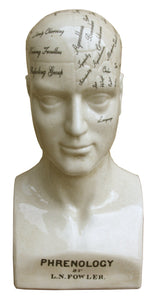 42cm Large Ceramic Phrenology Head
