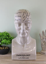 Load image into Gallery viewer, ceramic-large-phrenology-head