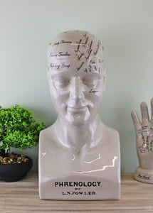 ceramic-large-phrenology-head