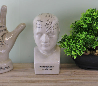 Small ceramic phrenology head, 19cm