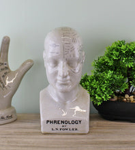 Load image into Gallery viewer, Medium ceramic phrenology head, 25cm