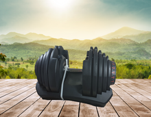 Load image into Gallery viewer, 40kg adjustable dumbbell Reptoro
