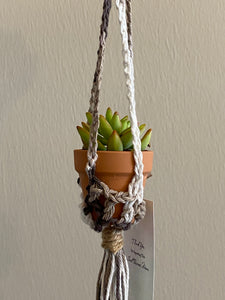 Mini Car Plant Hanger