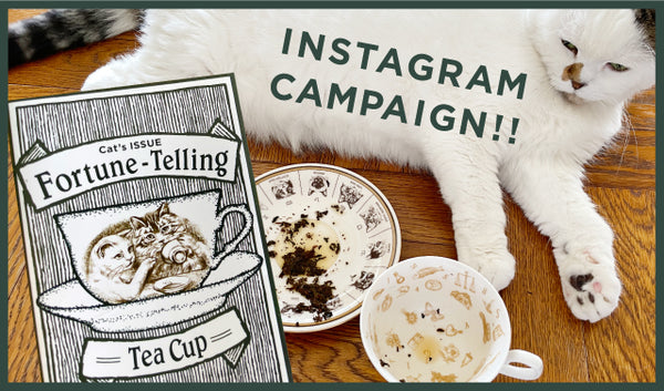 Cat's Fortune-Telling Tea Cup<div> Instagram Campaign!</div>