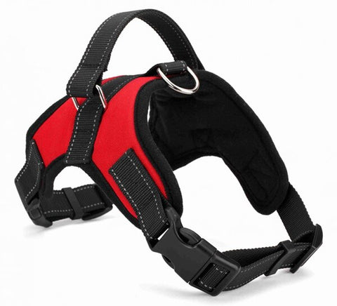 Reflective Pet Dog Harness Padded Soft Comfort Dog Collar | DogsMall-International
