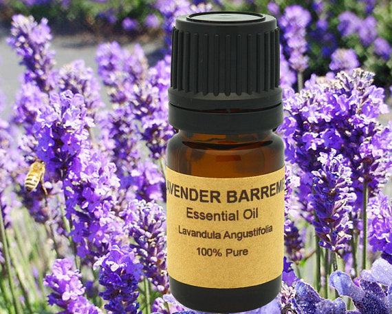 Lavender Essential  from France, Region of