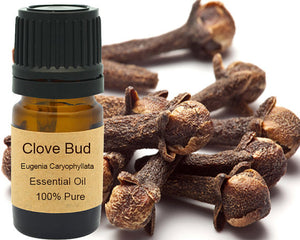 Clove Bud Essential Oil  5 ml, 10 ml or 15 ml