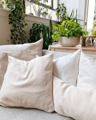 Organic cotton pillows with plants in the background.