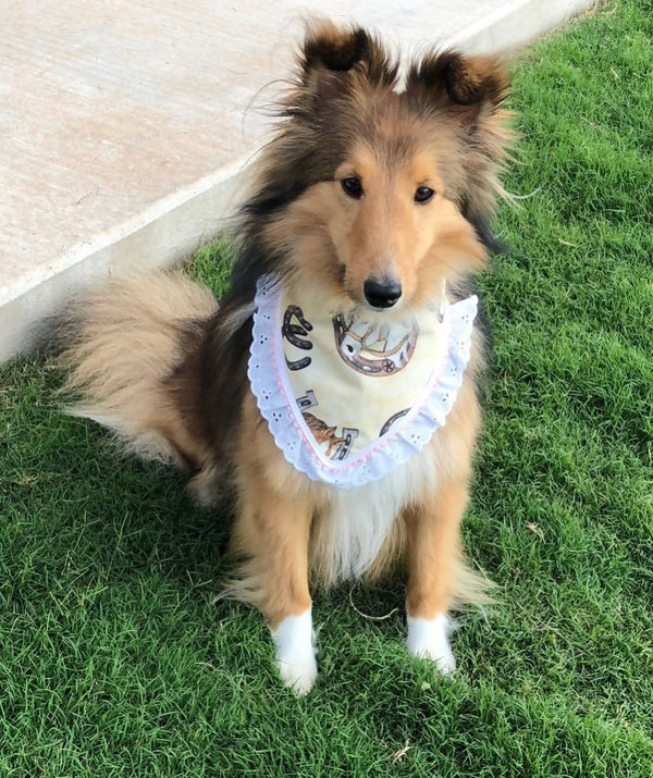 Handmade Cotton Medium Pet Bandana