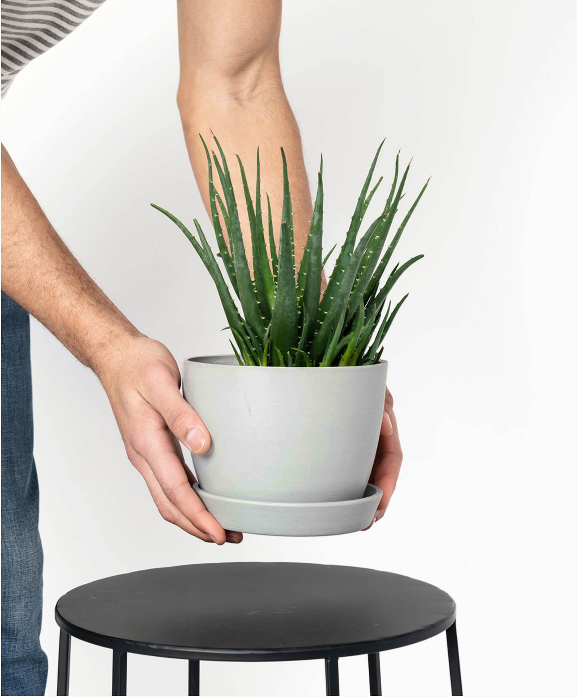 Small Eco-Pot
