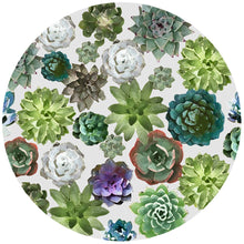 Load image into Gallery viewer, Silicon Jar Opener | Succulents