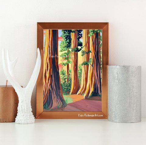 Redwood National Park Print
