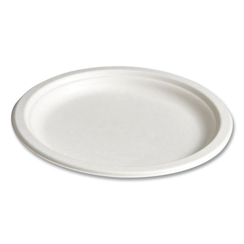 "Compostable Paper Plates, Bagasse, 9"", White, 250-pack"