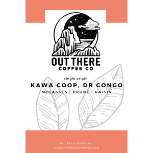 Organic Congo | Kawa Coop, Virunga | Fully Washed