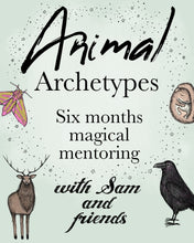 Load image into Gallery viewer, Animal Archetypes: wild wisdom mentoring with Sam