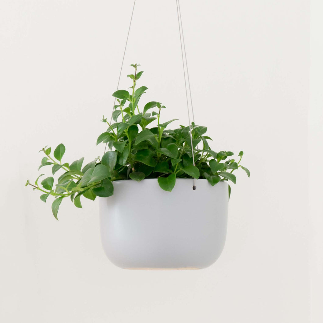 Ceramic Hanging Planter - Grey