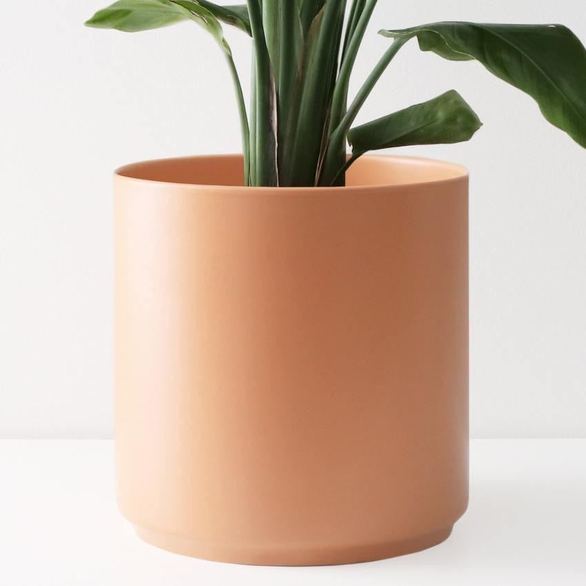Peach & Pebble Ceramic Planter - Peach