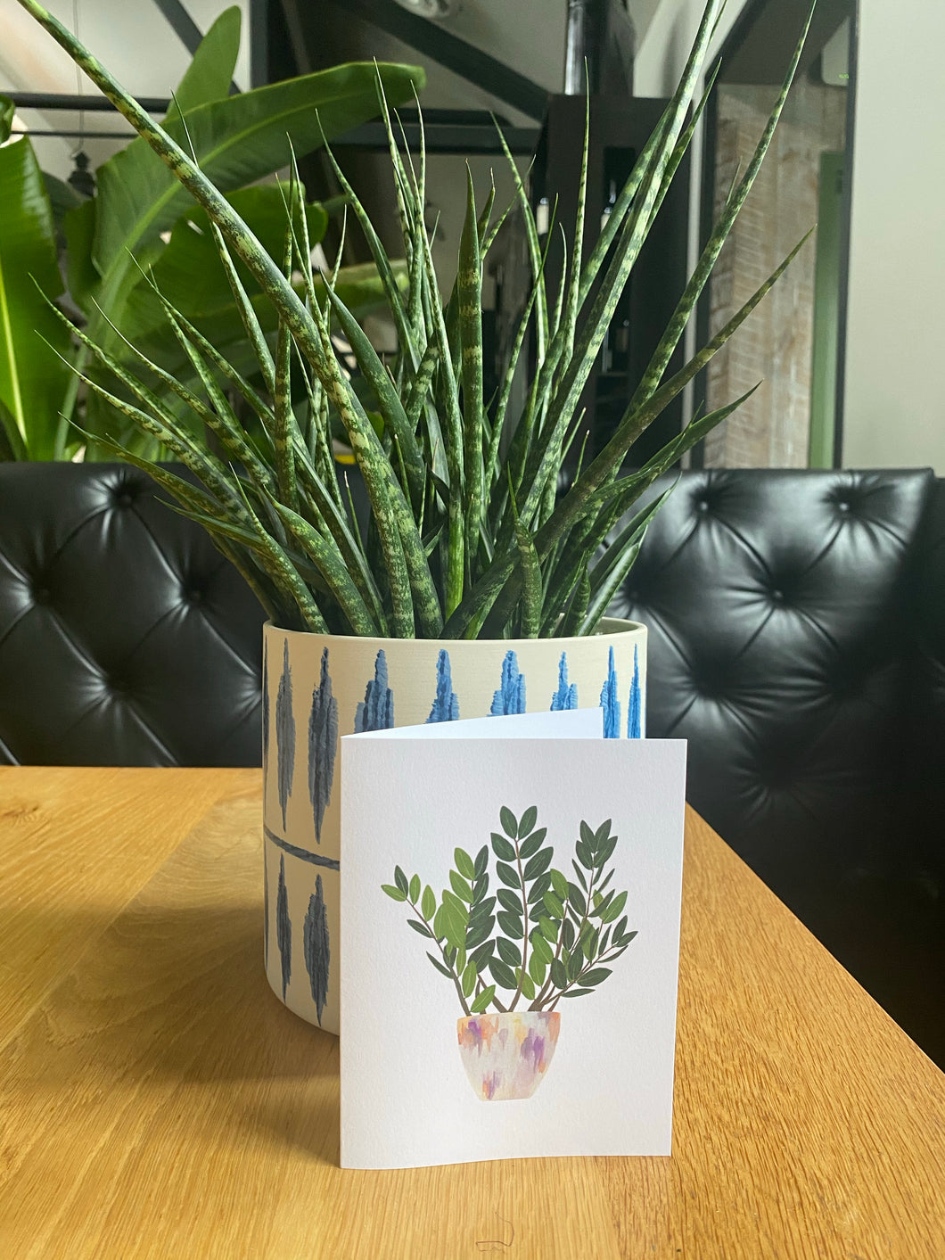 Houseplant Monthly Subscription