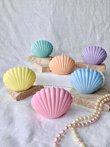SALE SHELL PASTEL