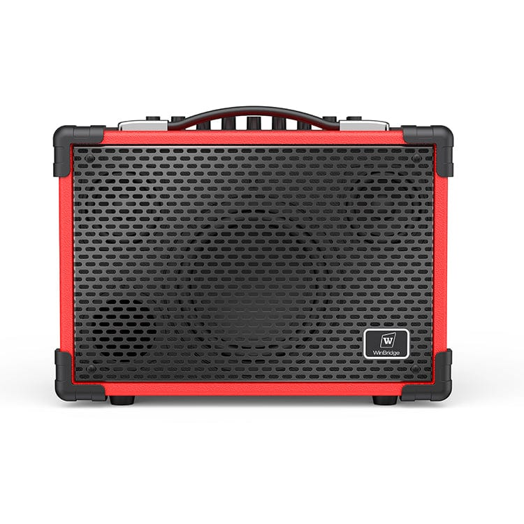 Portable PA System A6 | Multifunctional For Guitar Personal Entertainment 100W