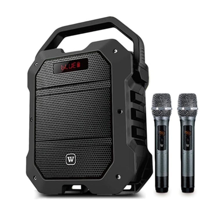 Portable PA System K10 | With Wireless Handheld Mic 80W