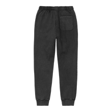 Load image into Gallery viewer, Cahartt WIP Mosby Script Pant