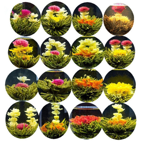 16 kinds Chinese Blooming Flower Tea Green Tea Ball Artistic Blossom Flowers Tea China Blooming Tea Green Organic
