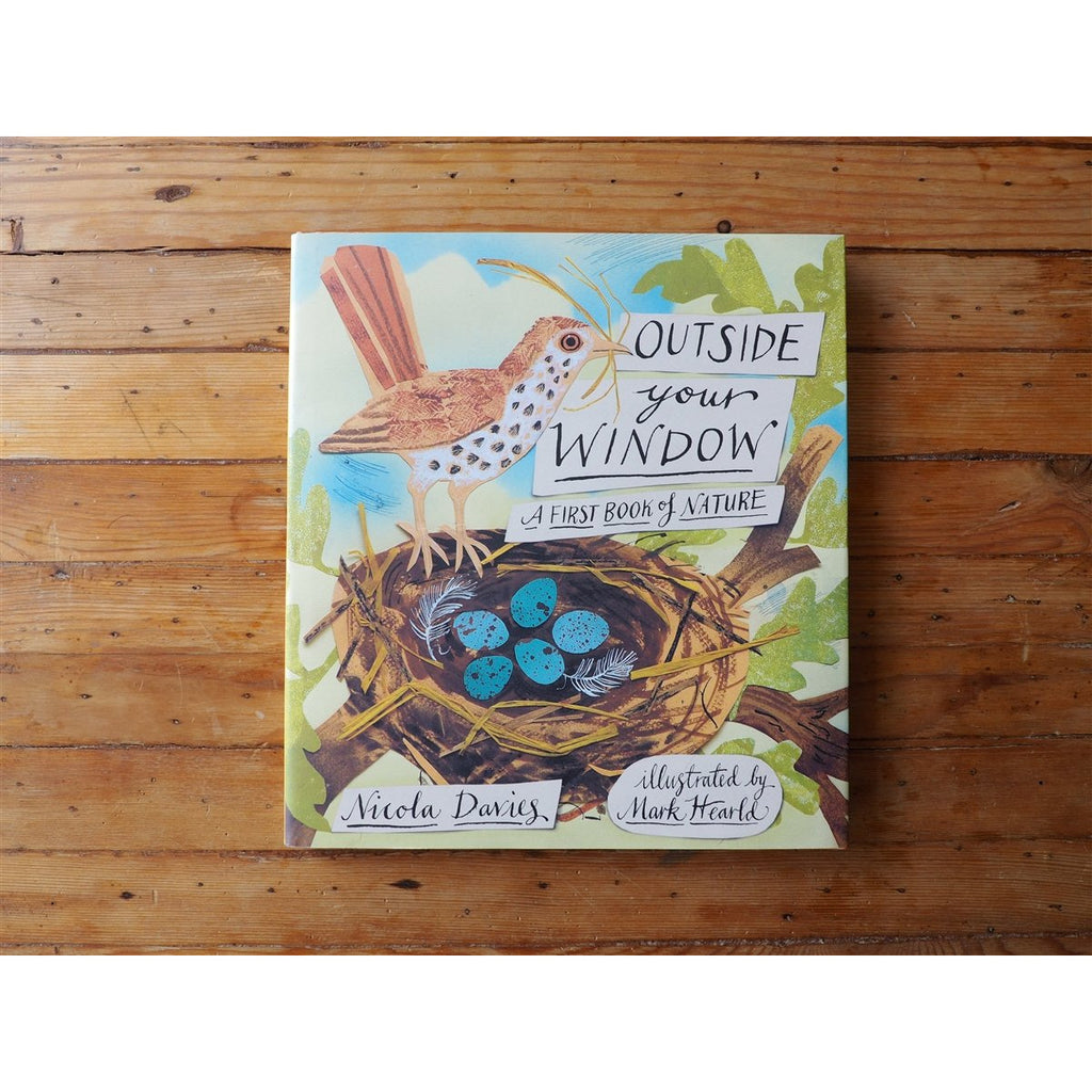 <center>Outside Your Window: A First Book of Nature by Nicola Davies</center>