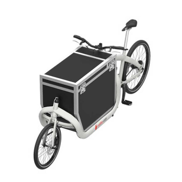 TRIOBIKE Cargo Transportbox