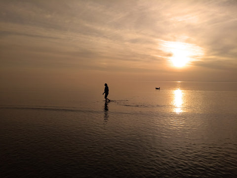 Person and dog walking in sunset lit sea
