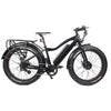 EUNORAU FAT-AWD  48V/250W+350W Fat Tire Electric Bike