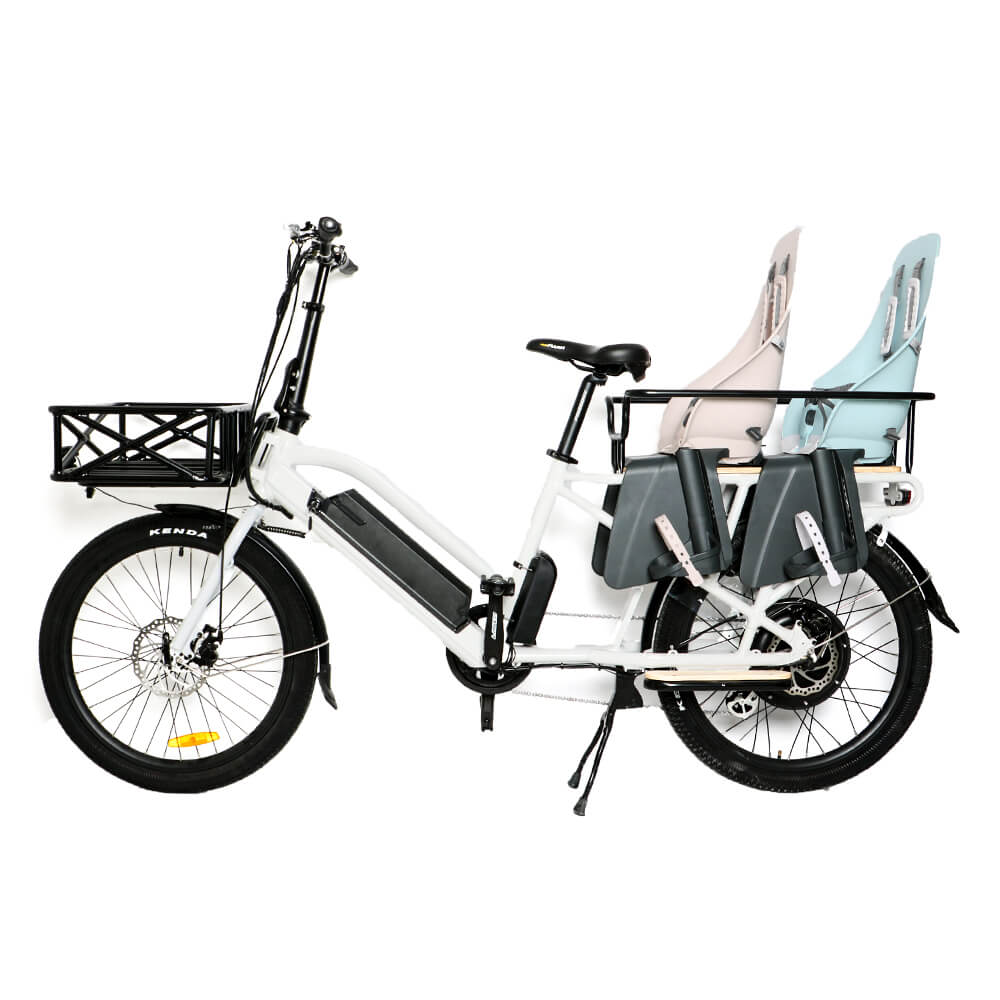 BEST Cargo 48V/11.6Ah 750W Electric Bike