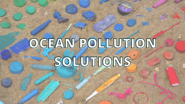 15 Solutions To Fight Ocean Pollution