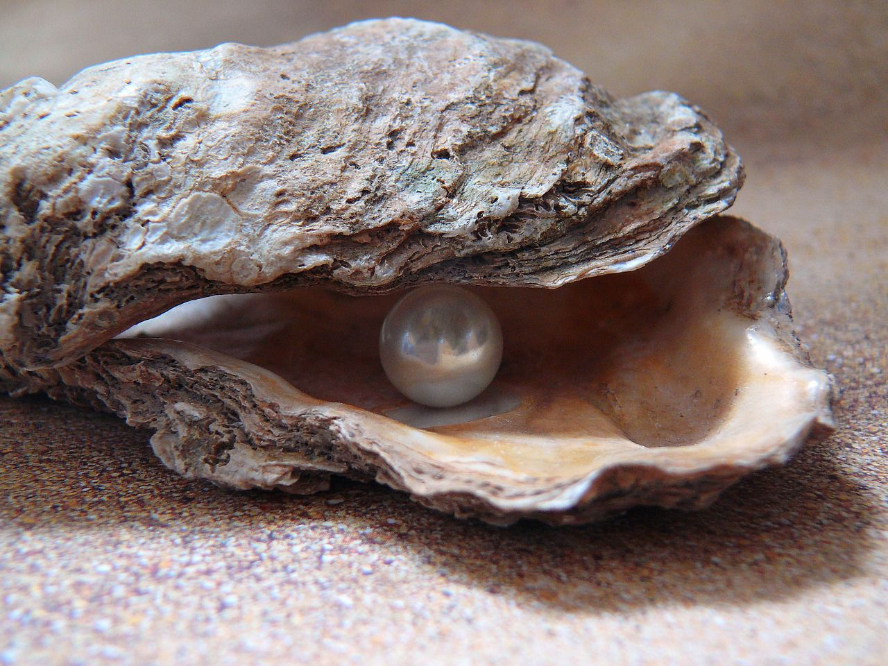 Different type of pearls