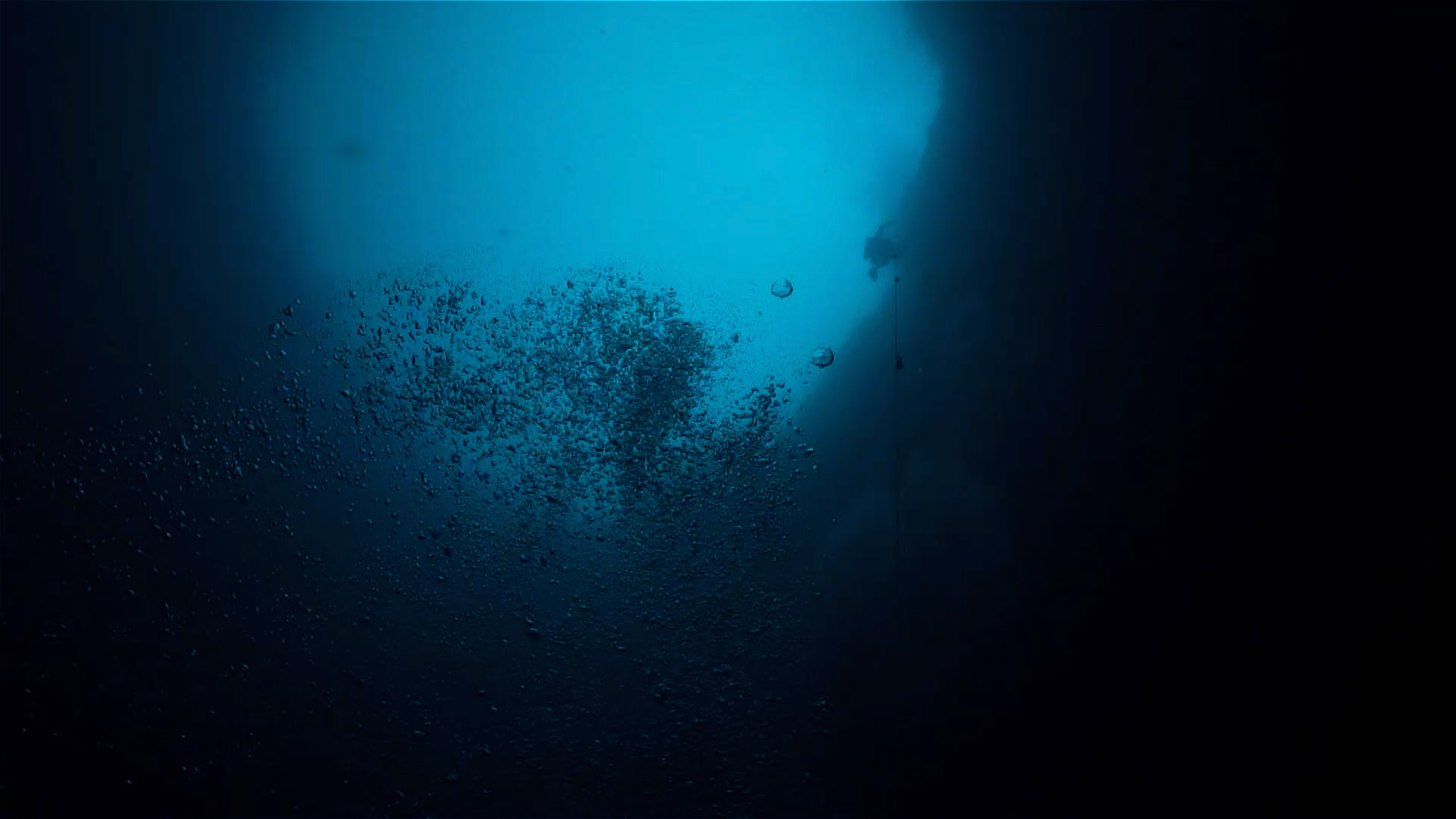 Interesting ocean scary facts