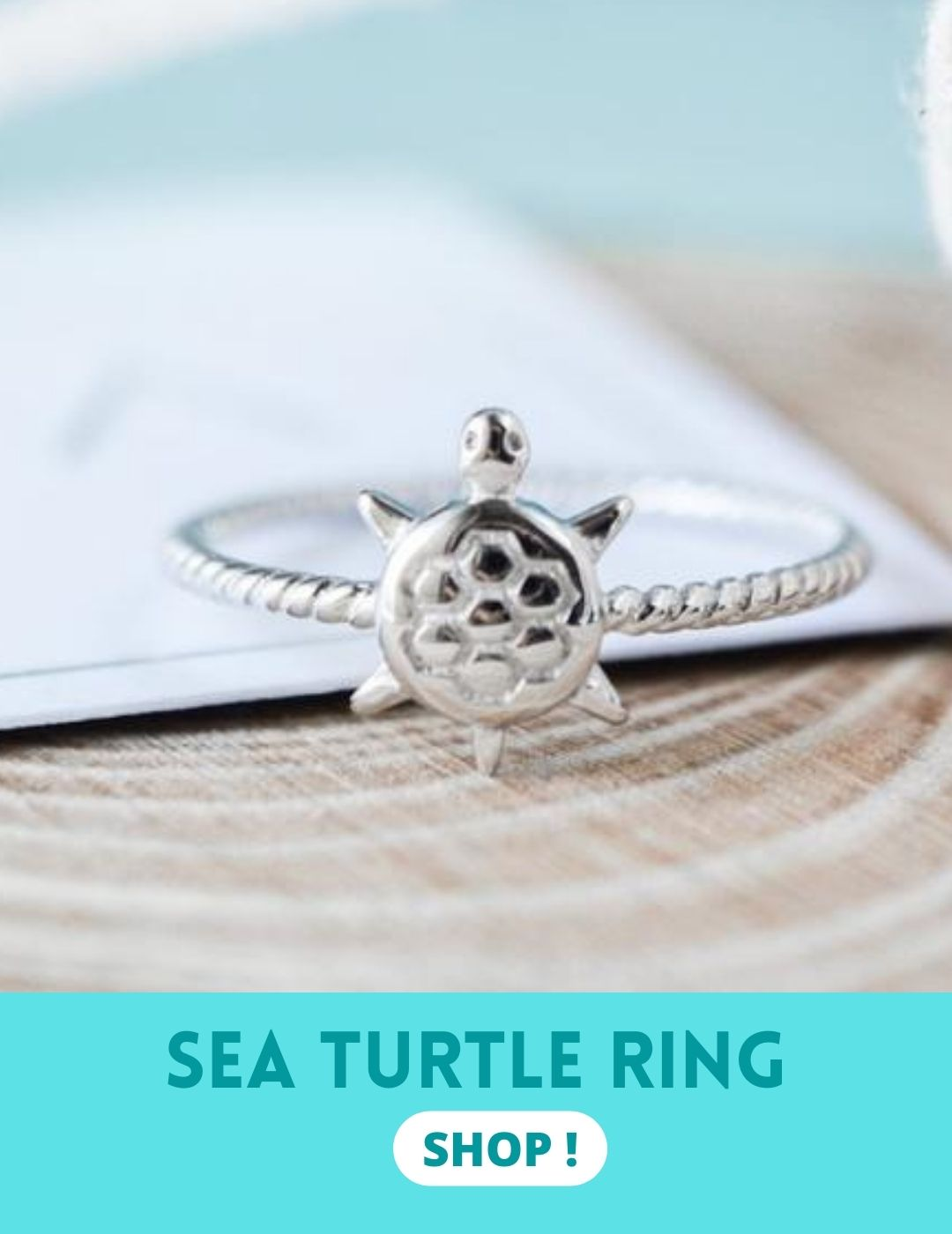 Sea turtle ring meaning