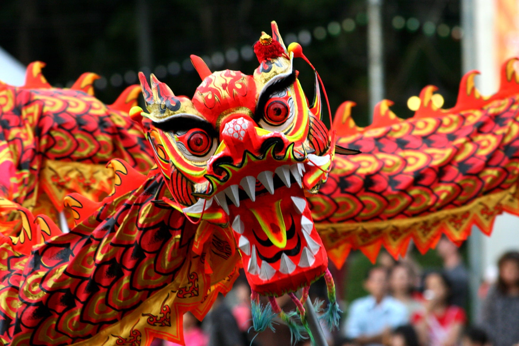 Dragon at a Chinese Festival