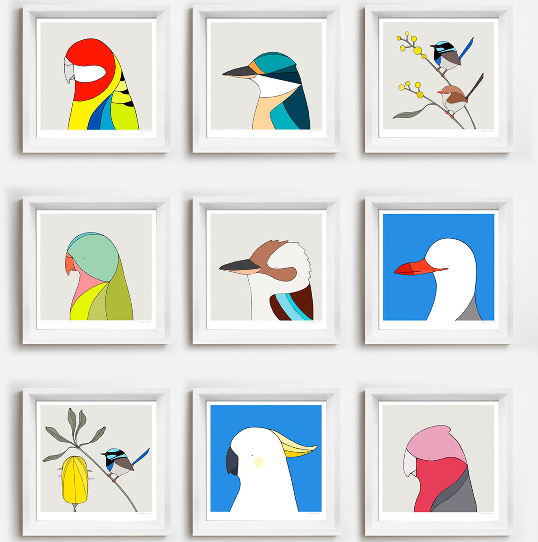 Framed Prints Australian Birds 23cm x 23cm