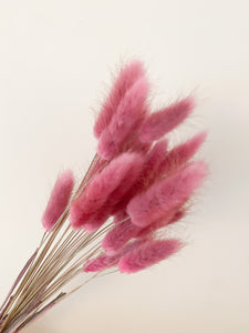 Bunches of Bunny Tails