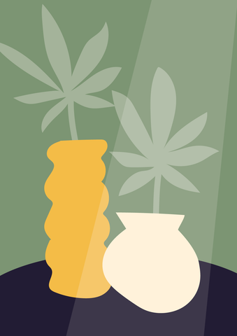 illustration of two hemp plants in vases